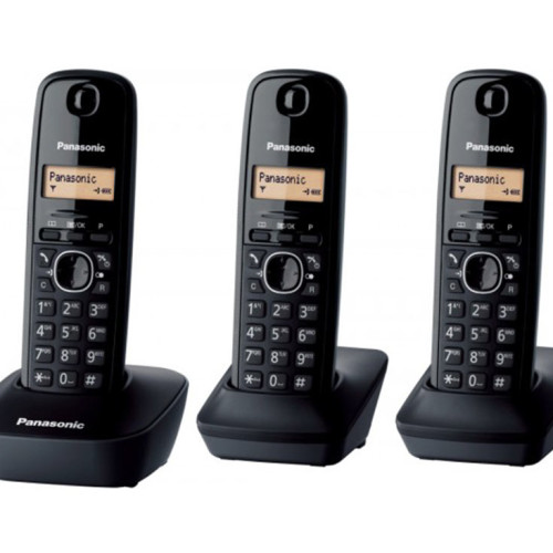 telefoni-fissi-panasonic-kxtg1613